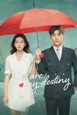 Nonton Drama China You Are My Destiny Sub Indo