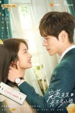 Nonton Drama China Perfect and Casual (2020) Sub Indo